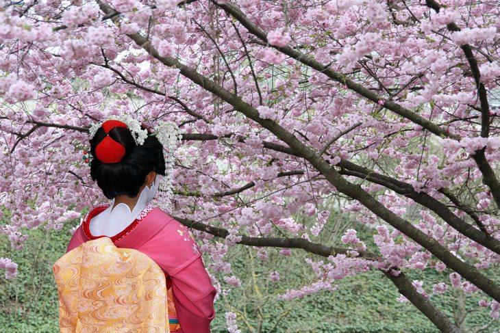 Chiste: El Amigo Japonés