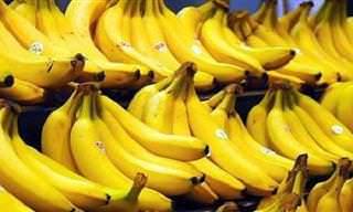 7 posts banana