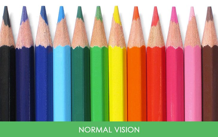 vision normal