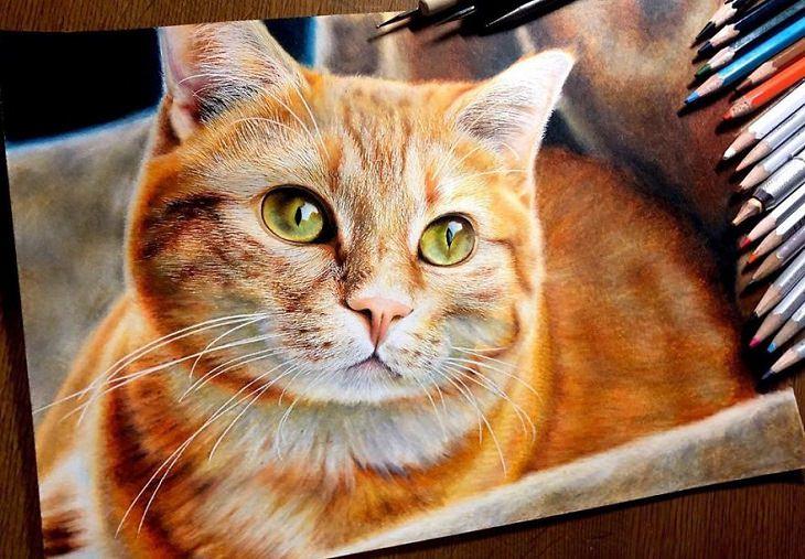 pinturas realistas de gatos