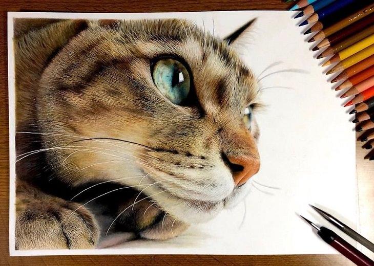 pinturas realistas de gatos  chico japonés