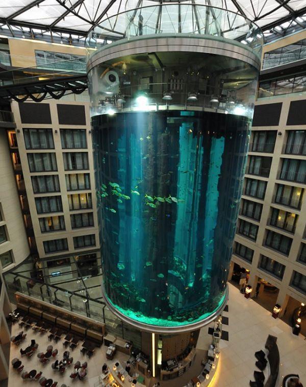 25 Increíbles Acuarios Que Te Sorprenderán  18. Un pozo de ascensor que se convirtió en un acuario