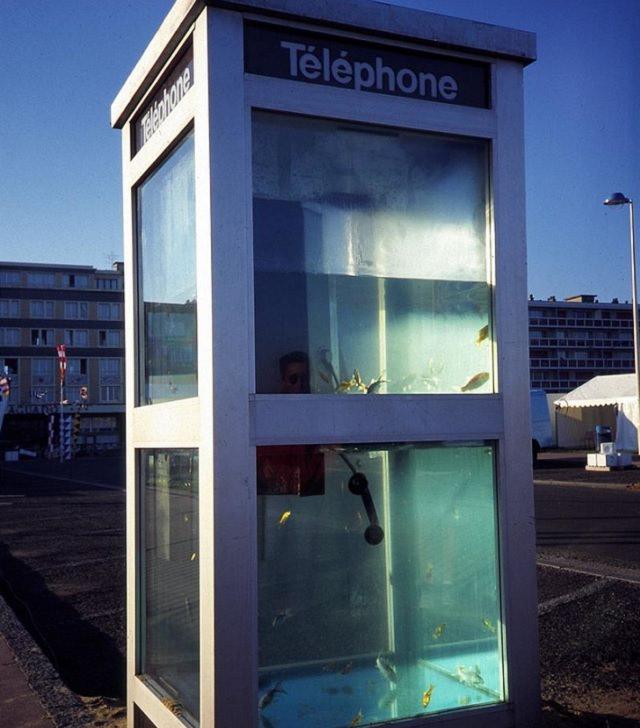 Acuarios creativos e inusuales con un diseño interesante, acuario de cabina telefónica