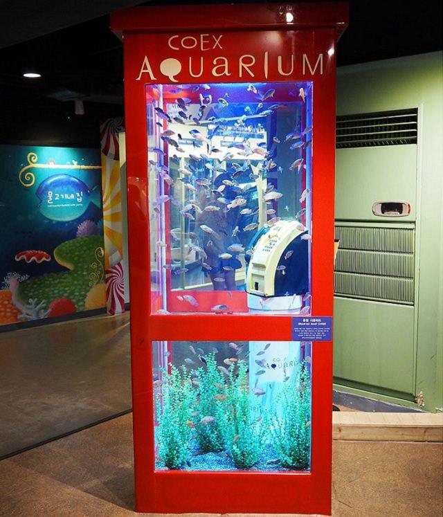 Acuarios creativos e inusuales con un diseño interesante, cabina telefónica Coex Aquarium Me gusta