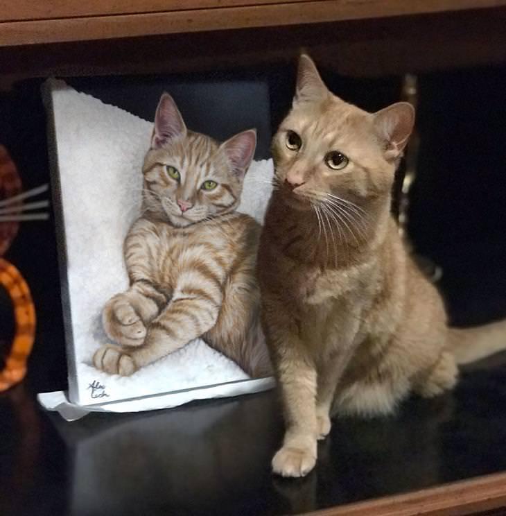 Retratos de animales Gato pardo