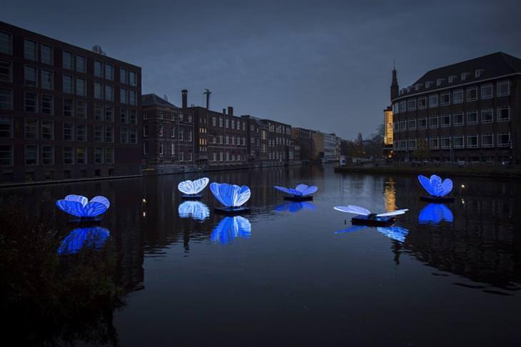 Festival de las luces de Amsterdam mariposas