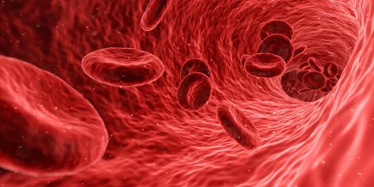 Menos De 50 Personas En Todo El Mundo Tienen Este Tipo De Sangre sangre de oro