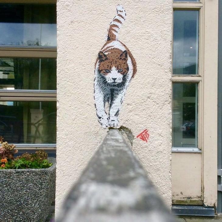 Arte callejero de Jamie Paul Scanlon gato
