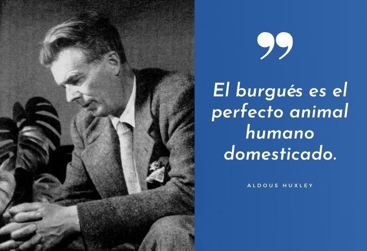 Frases Célebres De Aldous Huxley El burgués es el perfecto animal humano domesticado.