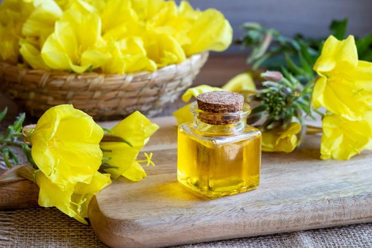 Aceites Esenciales Para La Artritis Aceite de onagra