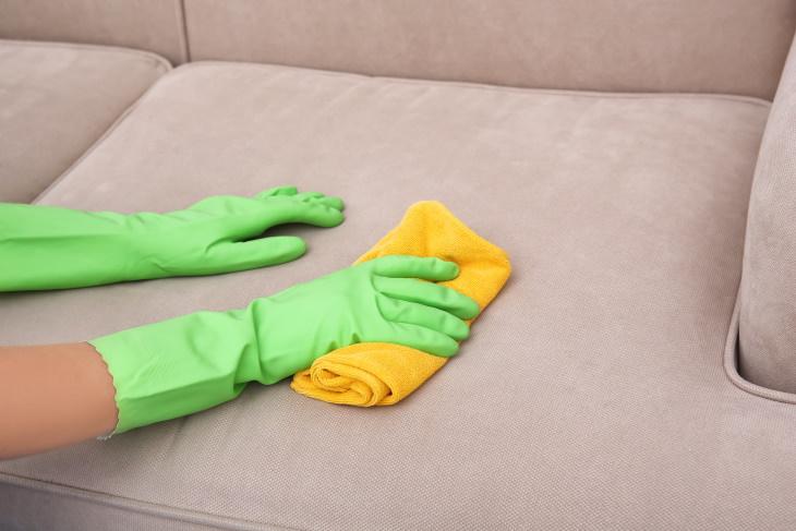 1. Limpiar tapicería y alfombras