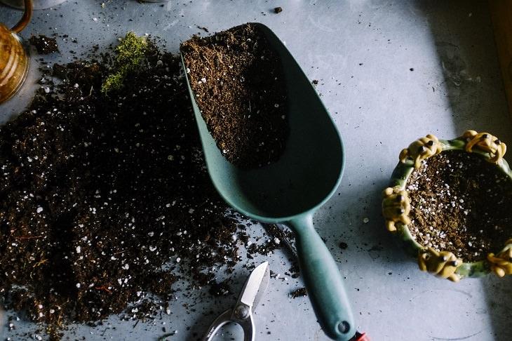 Cosas Que No Debes Limpiar Con Una Aspiradora Residuos vegetales y suelo
