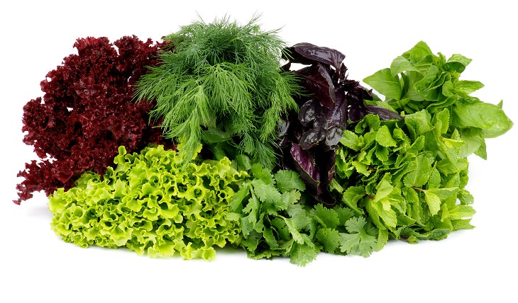 Verduras y verduras de hoja verde intoxicación alimentaria