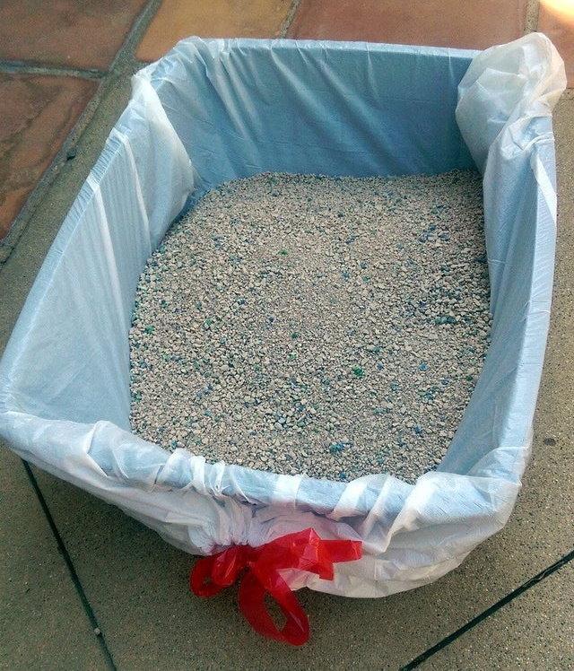 Trucos De Limpieza Para Dueños De Mascotas Cubre una caja de arena con una bolsa de basura