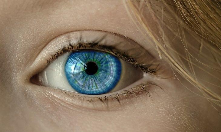 Datos extraños sobre el cuerpo humano El ojo humano puede capturar imágenes con una resolución de aproximadamente 500 megapíxeles