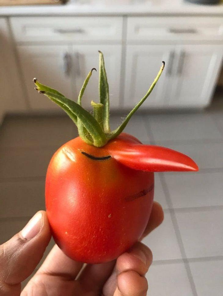 Frutas y Verduras De Formas Extrañas Que Se Ven Divertidas  El tomate snob de nariz extralarga.