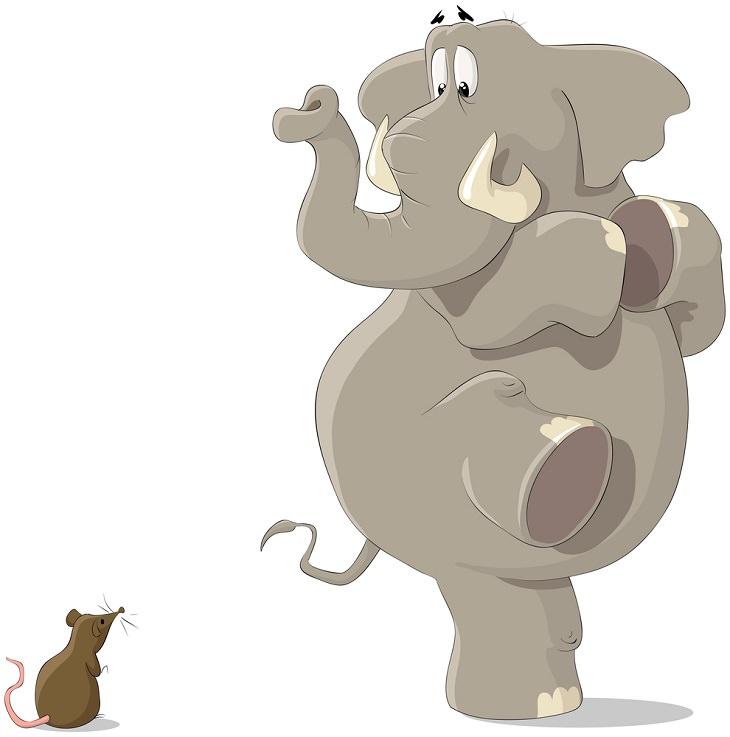 cuento elefante y La Rata