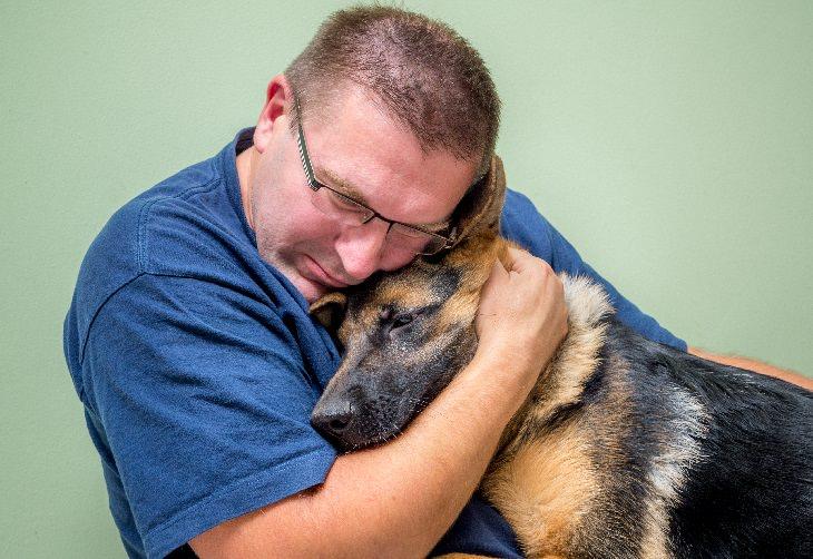 perros de apoyo emocional te ayudan a mejorar tu salud mental