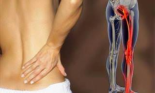 Ejercicios Para Aliviar Los Dolores Musculares