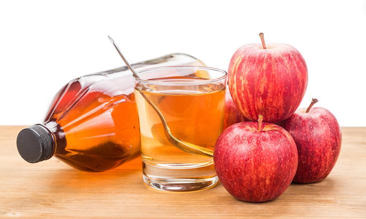 Tips para deshacerte de las moscas de la fruta vinagre