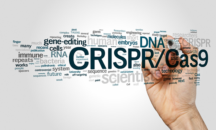 Modificación Genética CRISPR