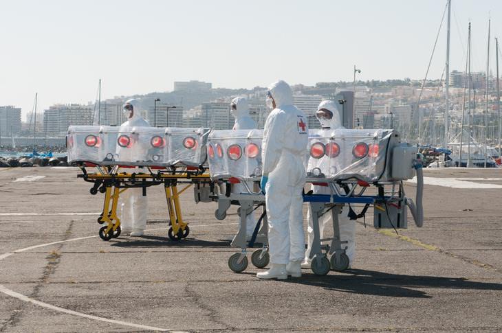 ¿cuándo sucedió la última pandemia?
