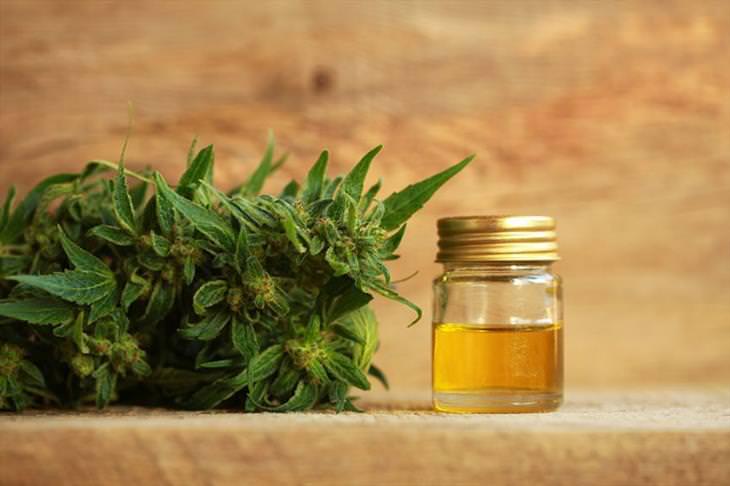 El aceite de cannabidiol 7 beneficios