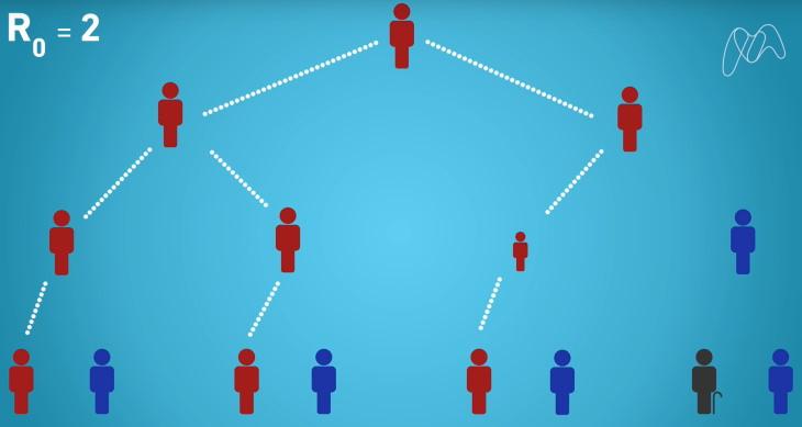 Qué es la inmunidad colectiva