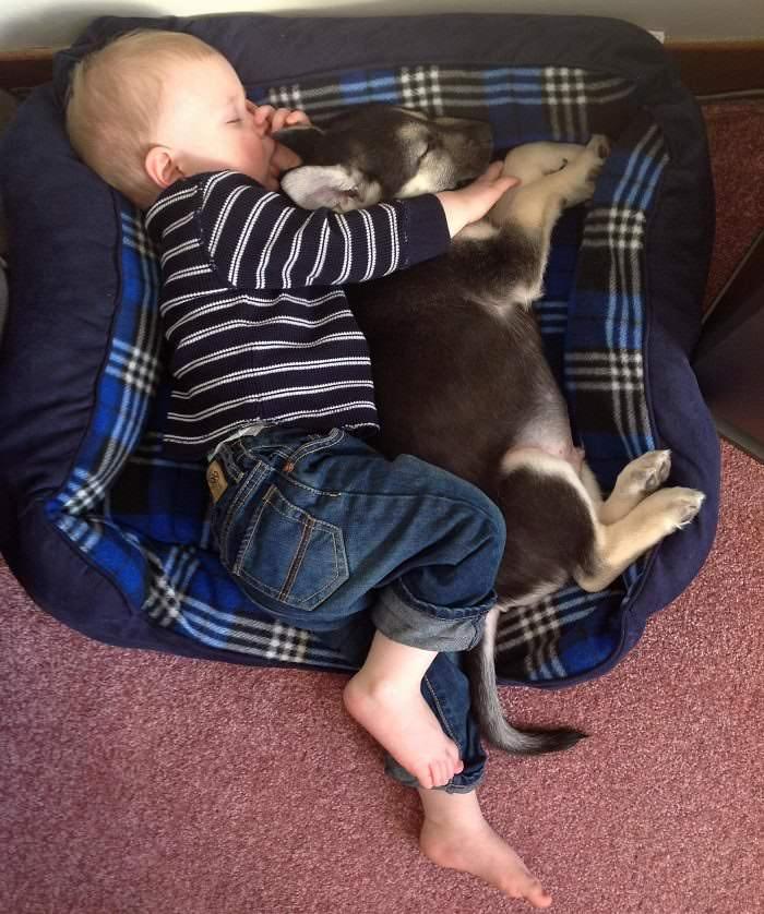 durmiendo con su mejor amigo