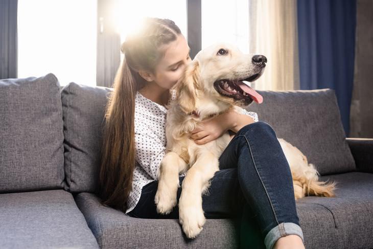 Cómo La Cuarentena Está Afectando a Las Mascotas Distanciamiento