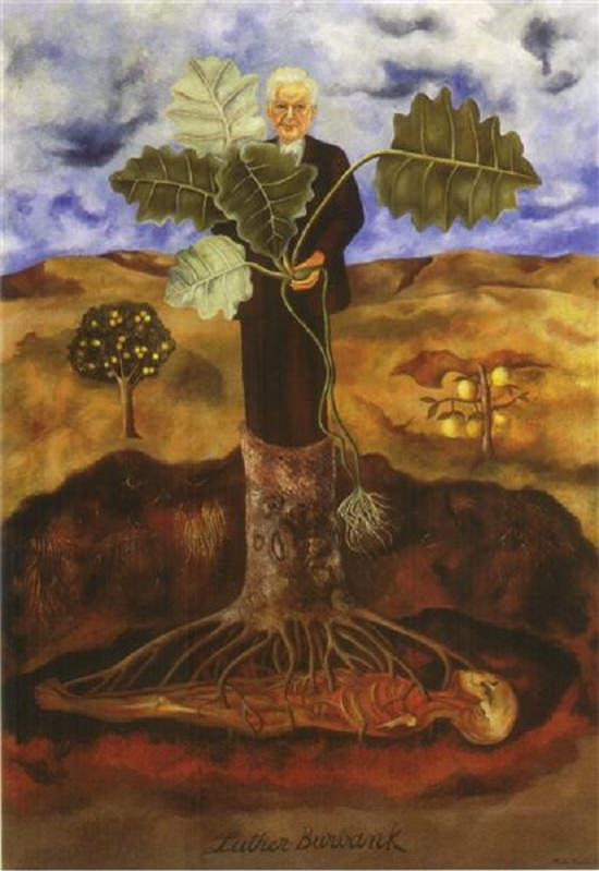 Pinturas de Frida Kahlo Retrato de Luther Burbank