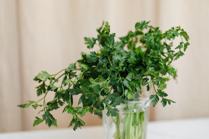 Para conservar las hierbas durante más tiempo, ponlas en agua como lo harías con las flores