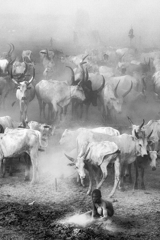 Ganadores del concurso de fotografía a blanco y negro 2019 Trevor Cole del Reino Unido