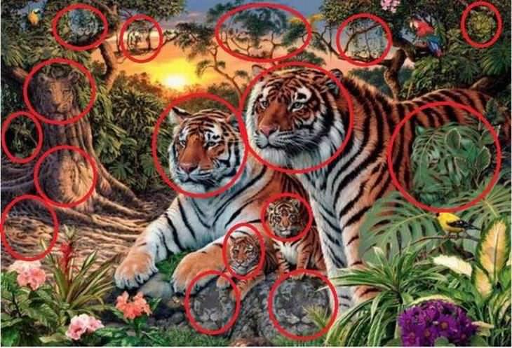 ¿Cuántos Tigres Puedes Ver En La Imagen?