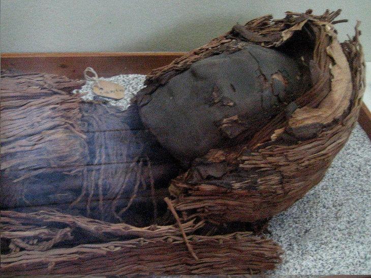 10 Hechos Históricos Fascinantes Momia de la cultura Chinchorro, encontrada en el norte de Chile