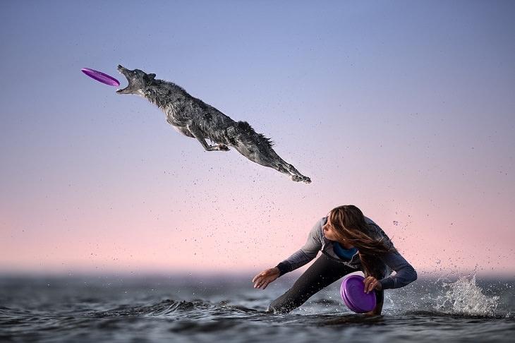 """Fotos en movimiento """"Volando sobre el mar"""" por Claudio Piccoli (Italia), Segundo lugar, Naturaleza"""