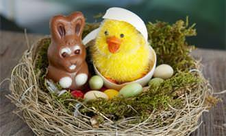 chocolate bunny and chick in basket with chocolate eggs