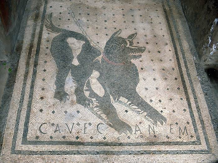 Lo Que Debes Ver En Las Ruinas De Pompeya La casa del poeta trágico mosaico cueva canem