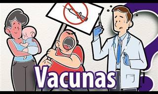 7 Posts Vacunas