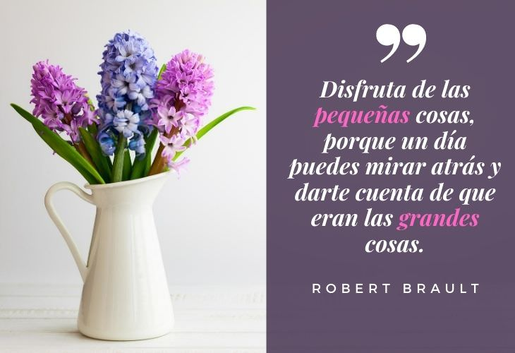 11 Bellas Frases Para Cultivar La Gratitud En La Vida Robert Brault
