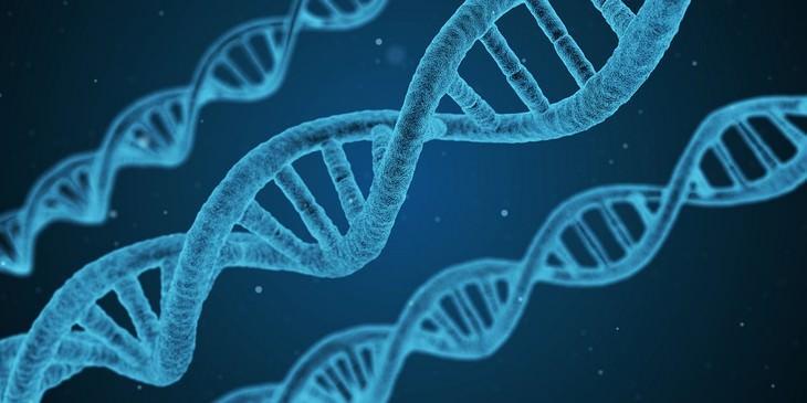 La ingeniería genética como tratamiento para la leucemia