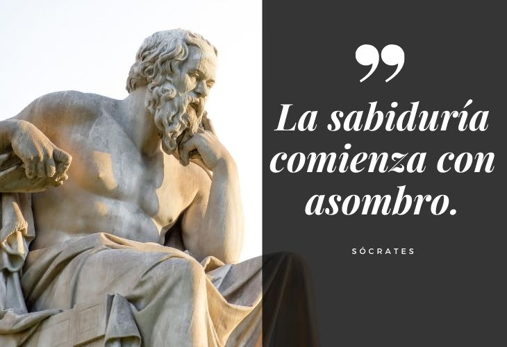 16 Frases De Sócrates  La sabiduría comienza con asombro.