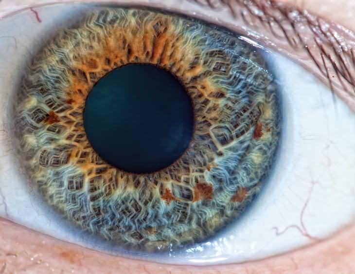5 Ejercicios Para Saber Cómo Están Tus Reflejos Ejercicio de reflejos pupila a pupila