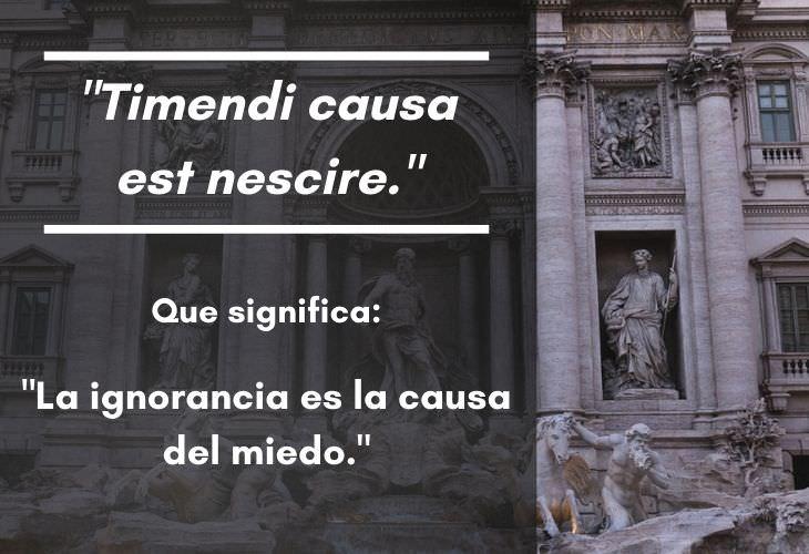 """15 Frases En Latín Con Un Significado Profundo """"Timendi causa est nescire."""""""