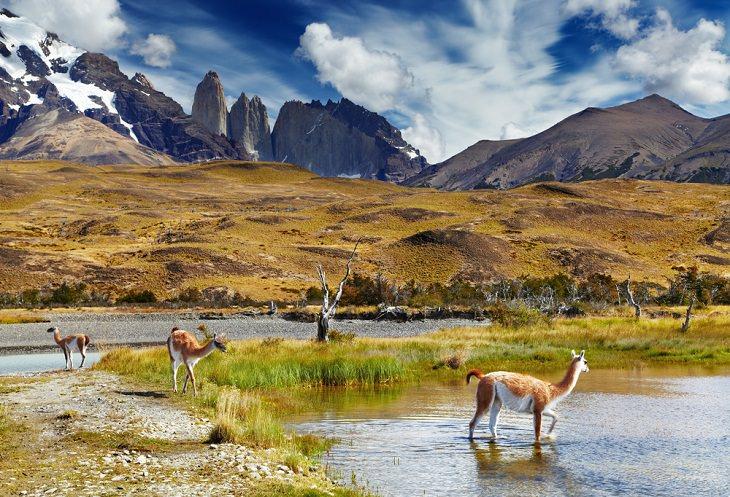 Lugares Intactos De La Tierra Patagonia norte, Chile