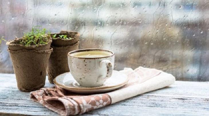 ¿Cuáles son los ingredientes necesarios para preparar kadha?