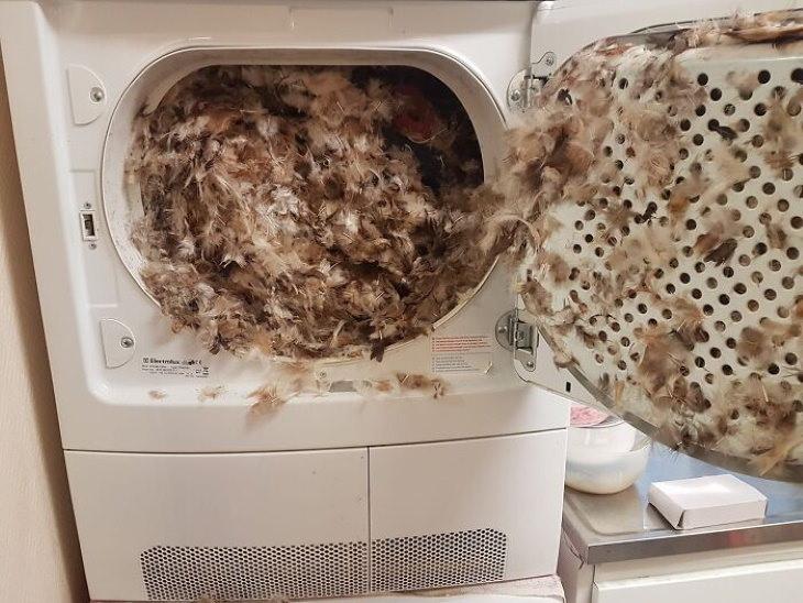 Divertdos Fallos Tecnológicos Almohada en secadora