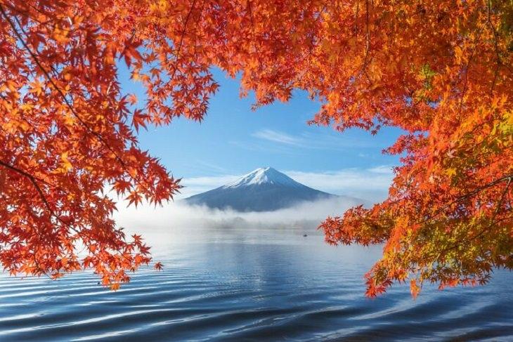 2. Cielo en la Tierra (Naturaleza, Oro).