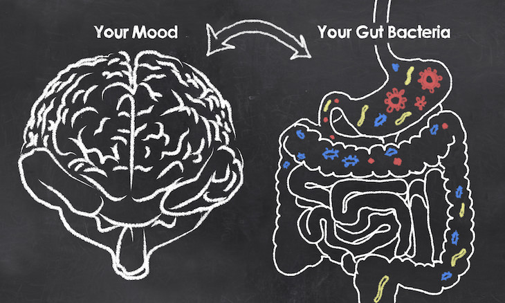¿Qué se sabe actualmente sobre la eficacia de los probióticos contra la depresión?