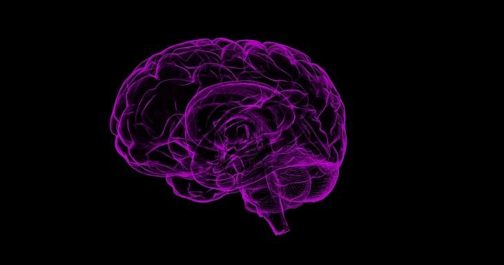 Una Neurona Artificial Podría Combatir Problemas Cardíacos